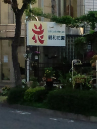 Hana_tengu