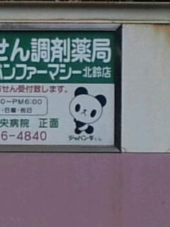 パンダは人気者。